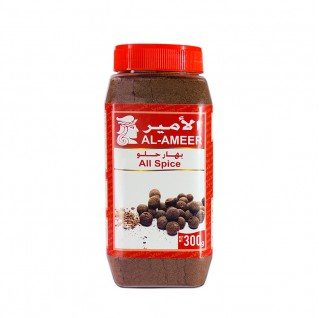Al Ameer All Spice 300g